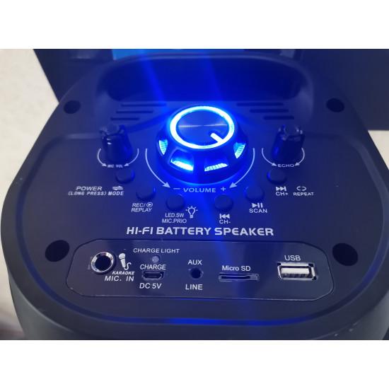 Портативная Bluetooth колонка CH-6601